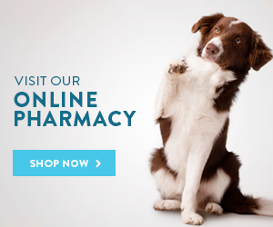 Shop online Pharmacy